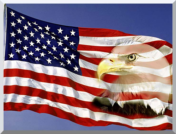 Visions of America American Flag  and a Bald Eagle stretched canvas art print