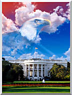Visions of America The White House With American Eagle stretched canvas art