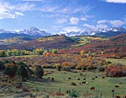Visions of America Sneffels Mountain Range Colorado