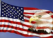 Visions of America American Flag  and a Bald Eagle