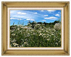 Brandie Newmon Field Of Wildflowers Easthampton Massachusetts canvas with gallery gold wood frame