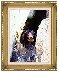Brandie Newmon Sun Bear Cooling Off canvas with gallery gold wood frame