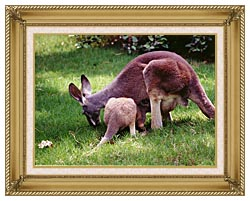 Brandie Newmon Wallaby Mother And Baby canvas with gallery gold wood frame