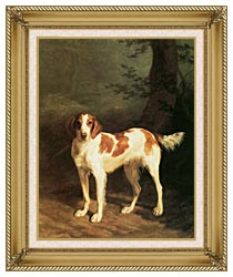Jacques Laurent Agasse Dash A Setter canvas with gallery gold wood frame