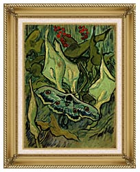 Vincent Van Gogh Emperor Moth canvas with gallery gold wood frame