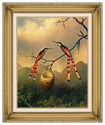Martin Johnson Heade Two Hummingbirds With Their Young canvas with gallery gold wood frame