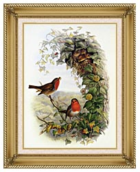 John Gould Robin canvas with gallery gold wood frame