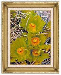 U S Fish And Wildlife Service Barrel Cactus canvas with gallery gold wood frame