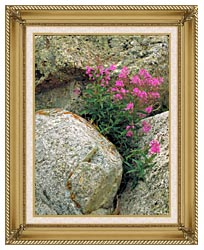 U S Fish And Wildlife Service Fireweed canvas with gallery gold wood frame