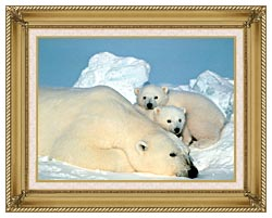 U S Fish And Wildlife Service Polar Bear With Cubs canvas with gallery gold wood frame