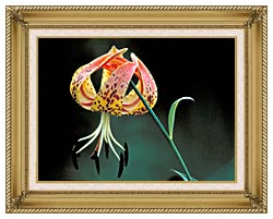 U S Fish And Wildlife Service Nodding Spotted Red Trillium canvas with gallery gold wood frame