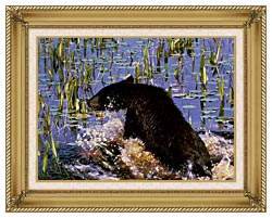 U S Fish And Wildlife Service Black Bear Cub In Pond canvas with gallery gold wood frame