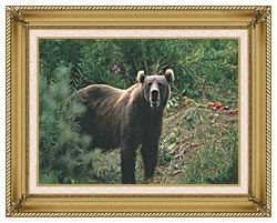 U S Fish And Wildlife Service Kodiak Bear canvas with gallery gold wood frame