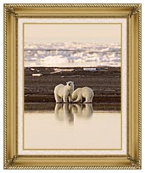 U S Fish And Wildlife Service Polar Bears canvas with gallery gold wood frame