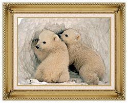 U S Fish And Wildlife Service Polar Bear Cubs canvas with gallery gold wood frame