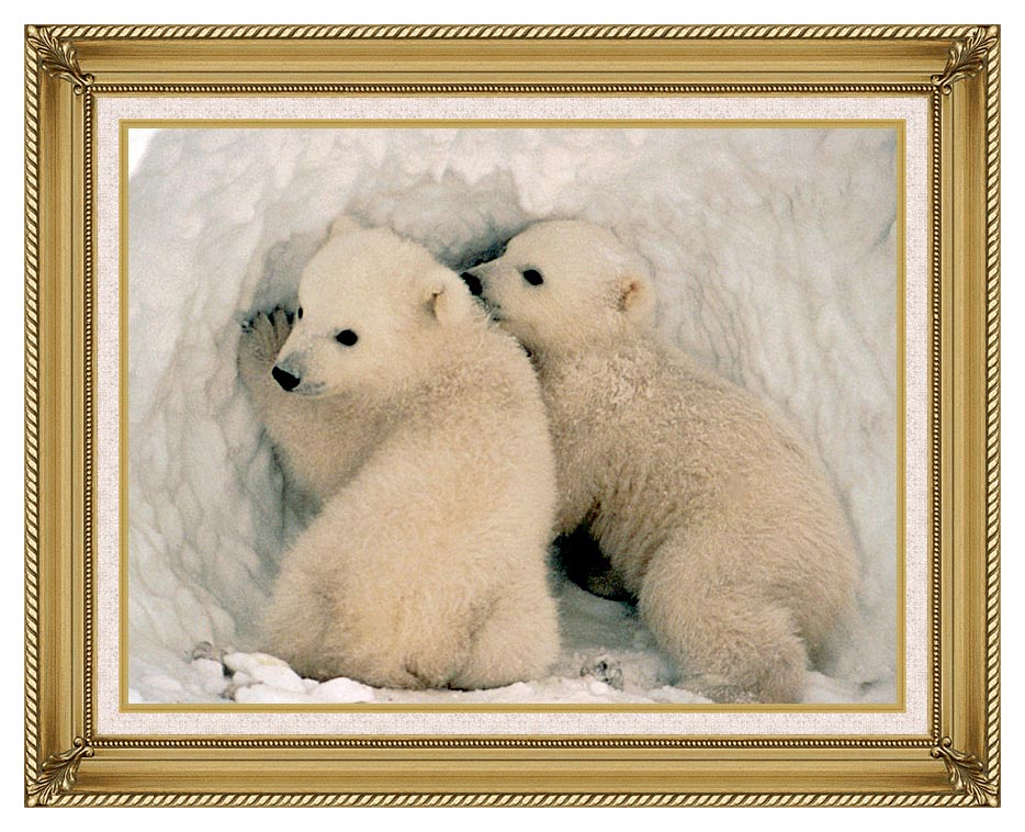 U S Fish and Wildlife Service Polar Bear Cubs with Gallery Gold Frame w/Liner