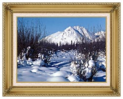U S Fish And Wildlife Service Arctic Refuge In Winter canvas with gallery gold wood frame