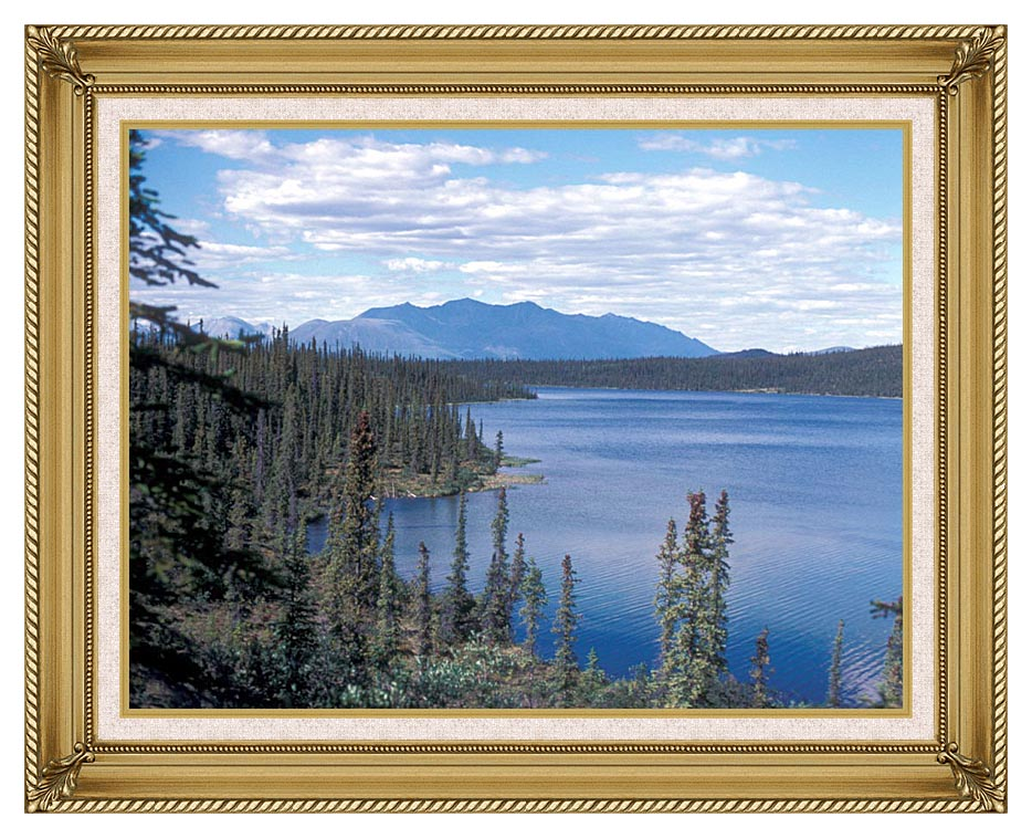 U S Fish and Wildlife Service Blackfish Lake with Gallery Gold Frame w/Liner
