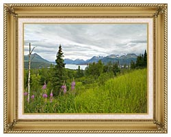 U S Fish And Wildlife Service Hillside With Fireweed canvas with gallery gold wood frame