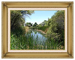 U S Fish And Wildlife Service Corn Creek Springs canvas with gallery gold wood frame