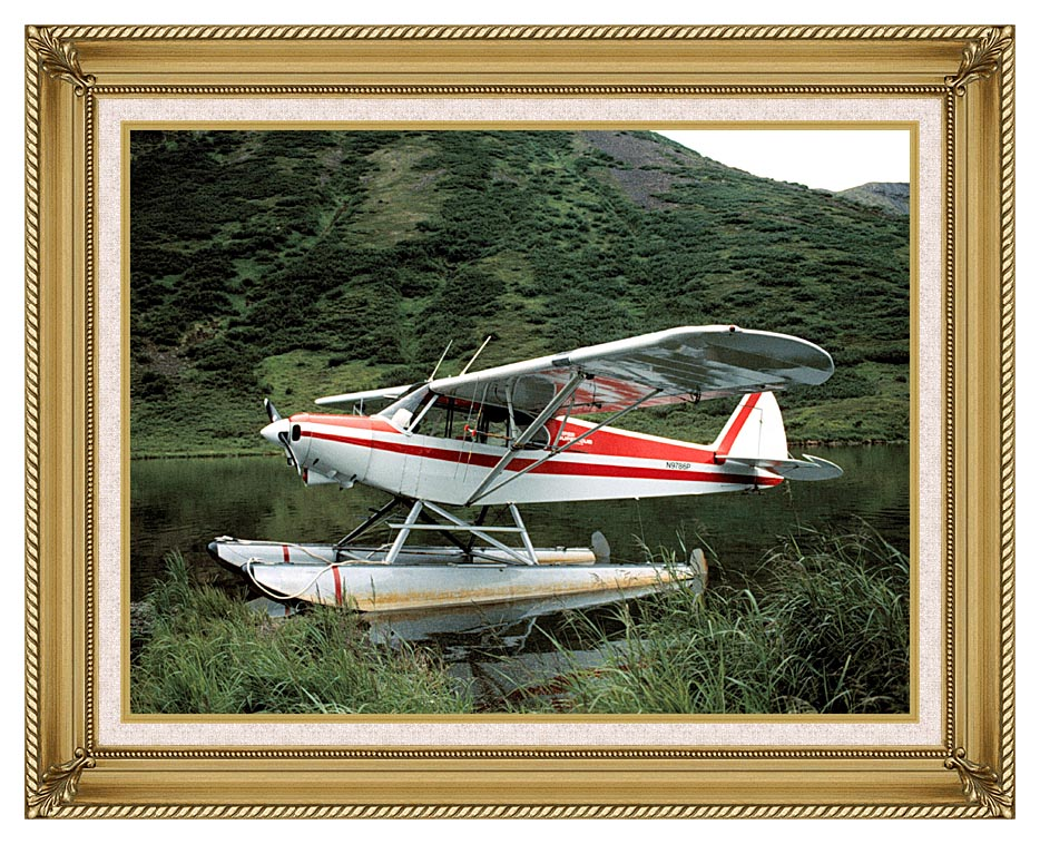 U S Fish and Wildlife Service Float Plane with Gallery Gold Frame w/Liner