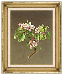Martin Johnson Heade Apple Blossoms canvas with gallery gold wood frame