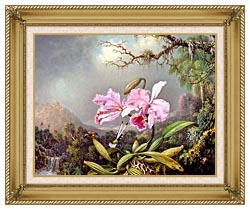 Martin Johnson Heade Study Of An Orchid canvas with gallery gold wood frame