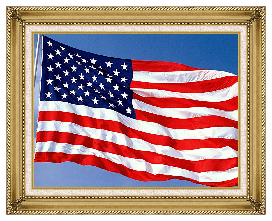 Visions of America American Flag Blowing in the Wind with a Blue Sky with Gallery Gold Frame w/Liner