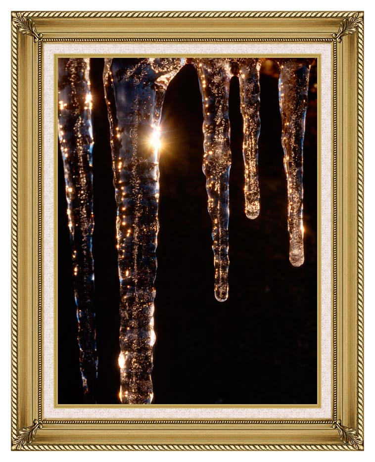 Visions of America Close-up of Icicles, Acadia National Park, Maine with Gallery Gold Frame w/Liner