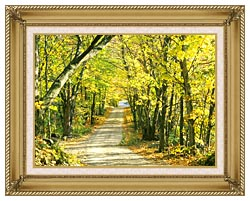 Visions of America Tree Covered Road In The Woods New England canvas with gallery gold wood frame