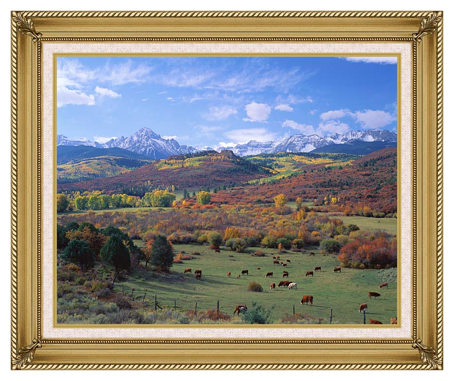 Visions of America Sneffels Mountain Range Colorado with Gallery Gold Frame w/Liner