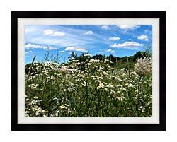 Brandie Newmon Field Of Wildflowers Easthampton Massachusetts canvas with modern black frame
