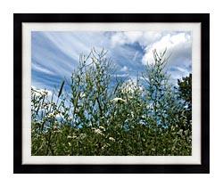 Brandie Newmon Wild Flower Field In Easthampton Massachusetts canvas with modern black frame