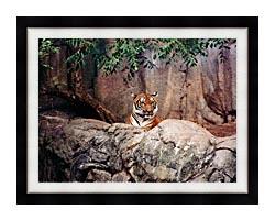 Brandie Newmon Tiger canvas with modern black frame