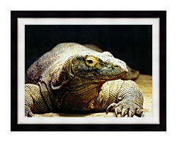 Brandie Newmon Komodo Dragon canvas with modern black frame