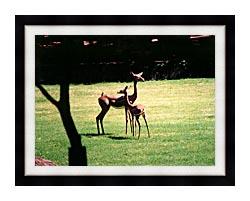 Brandie Newmon Gerenuk Antelopes canvas with modern black frame