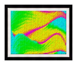 Lora Ashley Frolic canvas with modern black frame