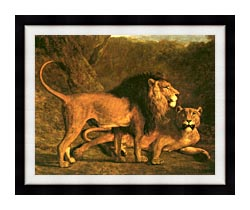 Jacques Laurent Agasse Two Lions Life Size canvas with modern black frame