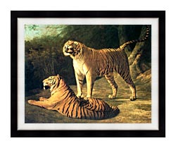 Jacques Laurent Agasse Two Tigers Life Size canvas with modern black frame