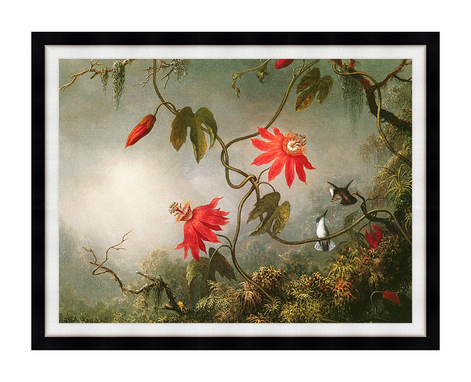Martin Johnson Heade Passion Flowers and Hummingbirds with Modern Black Frame