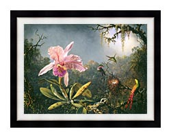 Martin Johnson Heade Cattleya Orchid And Three Brazilian Hummingbirds canvas with modern black frame