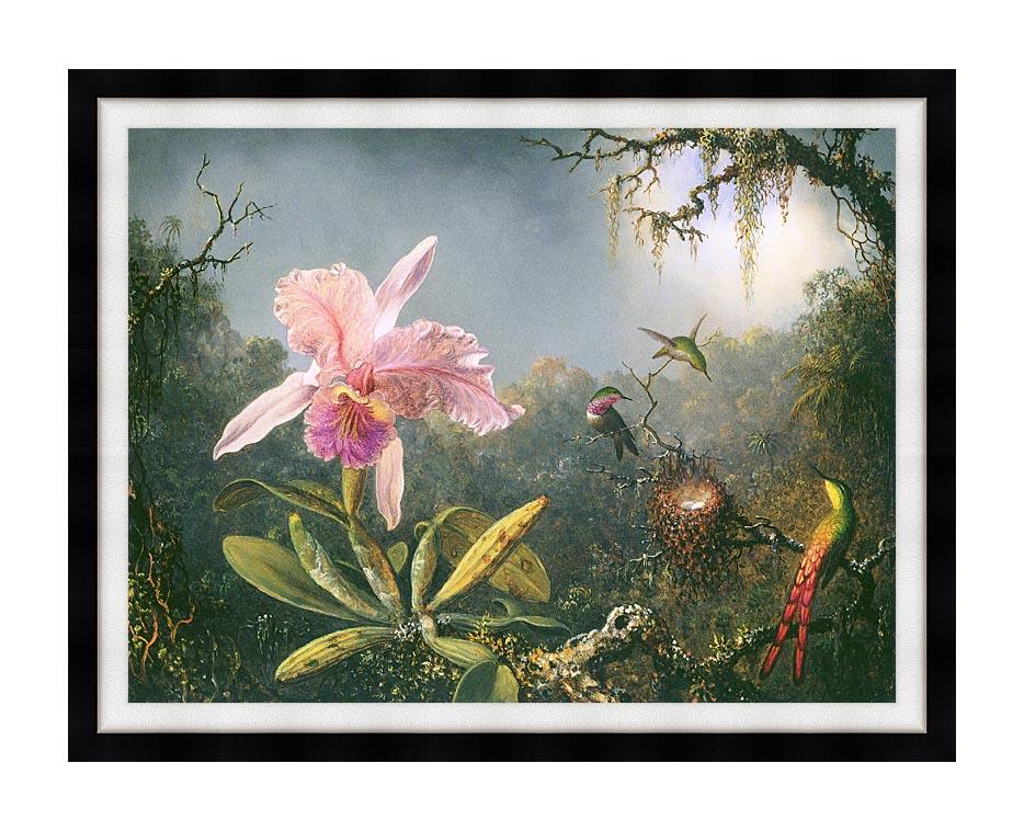 Martin Johnson Heade Cattleya Orchid and Three Brazilian Hummingbirds with Modern Black Frame