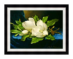 Martin Johnson Heade Magnolias On A Blue Velvet Cloth canvas with modern black frame