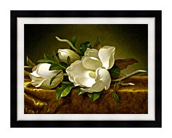 Martin Johnson Heade Magnolias On A Gold Velvet Cloth canvas with modern black frame