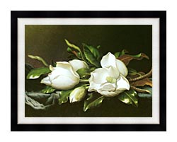 Martin Johnson Heade Magnolias Detail canvas with modern black frame
