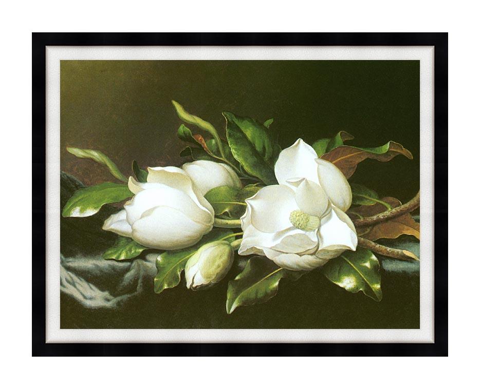 Martin Johnson Heade Magnolias (detail) with Modern Black Frame