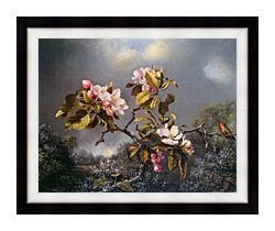 Martin Johnson Heade Apple Blossoms And Hummingbird canvas with modern black frame