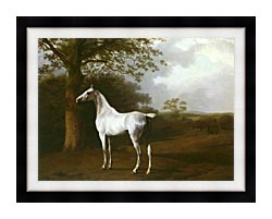 Jacques Laurent Agasse White Horse In A Meadow canvas with modern black frame