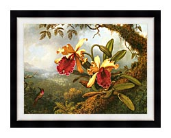 Martin Johnson Heade Orchids And Hummingbird canvas with modern black frame