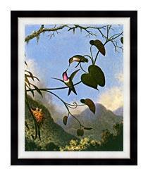 Martin Johnson Heade Amethyst Woodstar canvas with modern black frame